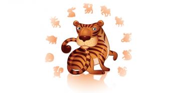 10 weetjes over de chinese tijger