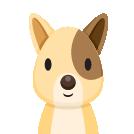 Lees alle eigenschappen van de oosterse Hond