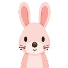 Lees alle eigenschappen van de oosterse kat of konijn