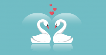 liefde zwaan